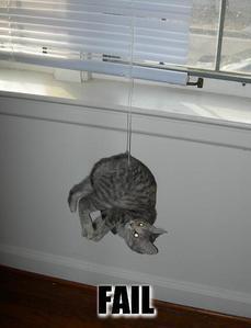 Poor Kitty. :P
