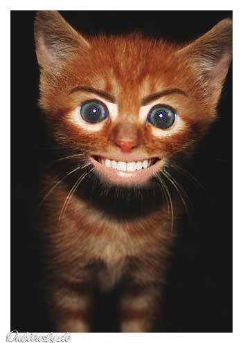 something to make 你 laugh? XD I got one......... XD lolz
