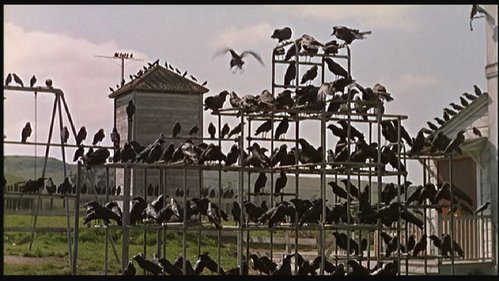 I've never forgotten this. It still scares me. =O The Birds never really made since to me, but the movie just stuck in my mind.
