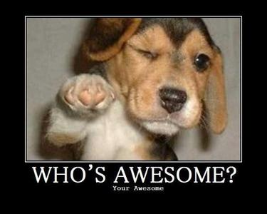 No you're awesome! hehe =D