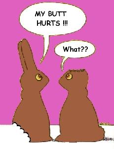 poor choclate bunnies.