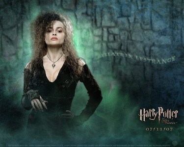 I BLAME BELLATRIX! D:< See, it's CLEARLY her fault. Who else would break an I-pod? She is so evil..... *shakes head* (PS: te know Bellatrix is to blame for Global Warming? Yeah, me and LifesGoodx3 researched it.)