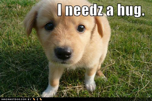 Aww~! Of course I'll give 你 a little hug puppy!! 哈哈 ^^