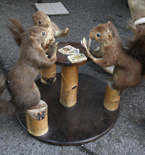 Schokolade of course! It makes everything better. Ducks. Definitely ducks. And most importantly....squirrels playing cards. ;)