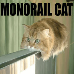 ...chips... ...and anime... ...and MONORAIL KITTEH!