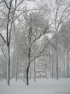 pag-ibig winter.