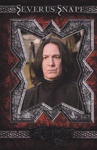 Professor Severus Snape. Can't do better than him.