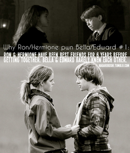 Ron&Hermione from Harry Potter image credit goes to Gred_and_Forge (HP vs TL spot)