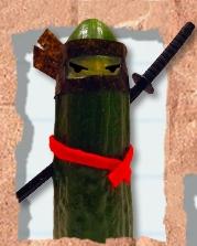 Sup Look at the Ninja Cucumber!! xD