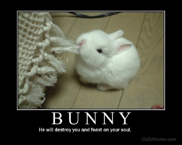 I like bunnies that feast on souls