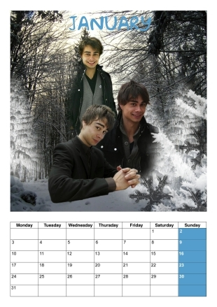 I'm making one for myself, it looks something like this. If someone is interessted I can উঠিয়ে রাখুন the calender once I have very month...