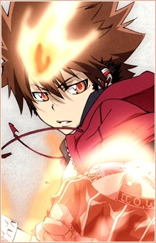 I have too many characters that I want to meet like Zoro, Tsuna, Kei, Ace, Toushirou,Gin-chan and others. If there is a limit, the one that I really want to meet is Roronoa Zoro ( One Piece ) and Sawada Tsunayoshi ( Katekyo Hitman Reborn ) There is a pic of Tsuna.^_^
