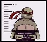 Raph, because he's awesome, angry, aggressive, sarcastic, and afraid of bugs. He can also be loving and nurturing. It especially shows it in 'Touch and Go.' He's tough, strong, loving, and pretty much everything a tough guy should be deep down. The show isn't complete without Raph.