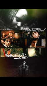 Harry Potter will never end, as long as we keep it in our hearts and childhood memories.