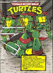 My Favorite was Raphael! For no other reason than he was the bad boy, he kinda gave a balance.