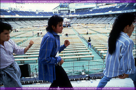 i would probably scream so loud my parents would put me outside til i was done!!!!! it would be the bad tour and i would be in the front row!!!!!!!!! :)