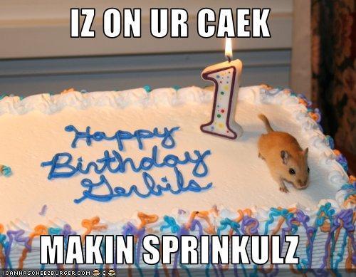 Happy birthday!! :D *Random birthday pic... :3