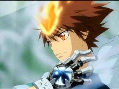 1)Kateikyoushi Hitman Reborn 2)Fairy Tail 3)Tsubasa chron./Inuyasha/Kaichou wa maid-sama ^^