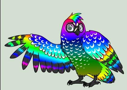 the cầu vồng owl i made it