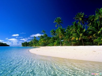 going any place where there has clear blue water alot of fish. nice beachs and palm trees. looks like this.