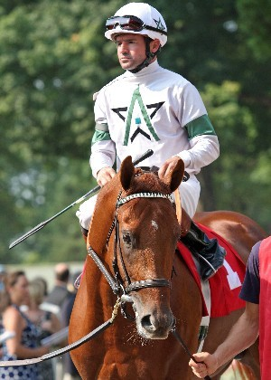 Goin to watch my horse race in the Kentucky Derby. Ice Box this is him. how gorgeous!!!!!!!!!