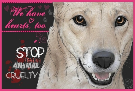 I hate Animal Cruelty.