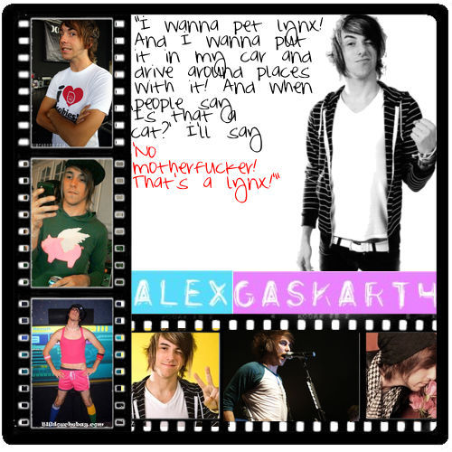 (what it says on the picture) ahh, you gotta pag-ibig alex gaskarth xD