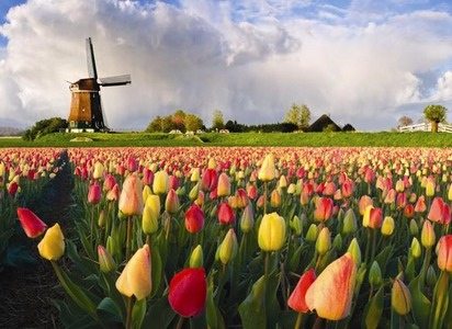 The Netherlands!!