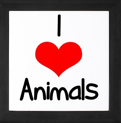 I Liebe every animal. The only animal I get creeped out around are bugs.