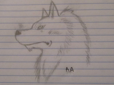 It's a wolfie! :D x3 And the initials just stand for Ashley... I like that name, so... xD [AA = Ashley twice. :P]