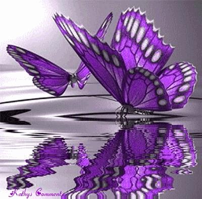 [b]♥ Purple ♥ [/b]