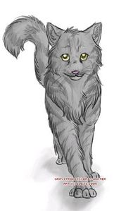 Name: Muttzeren