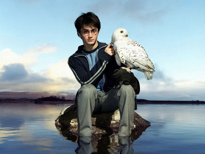 Here is mine!!! Hope there ain't any problem with hedwig...