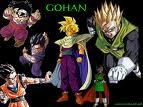 i only know gohan's age!! it was 6 yrs old in saiyan saga , 11 yrs old in cell saga and 17 yrs old inbuu saga:)