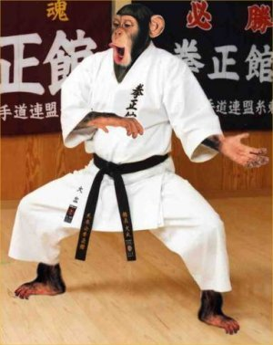 This is Jim, my far cousin. He's into karate.