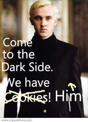 My inner demons already got me in the dark side (says so in my motto). And believe me, the koekjes, cookies SUCK. But... THEY HAVE HIM!!