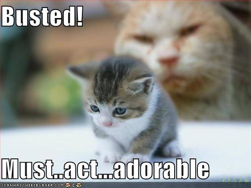 not really adorable..but whatever!