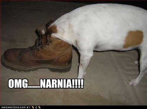 No,Narnia iz even better*goes into the closet*