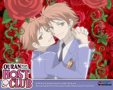 Hikaru and Kaoru from Ouran High School Host Club!