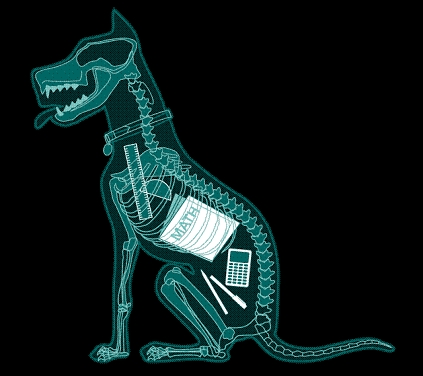My dog ate my homework. Then I brought in a fake x-ray of him.
