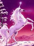 to see a unicorn :D
