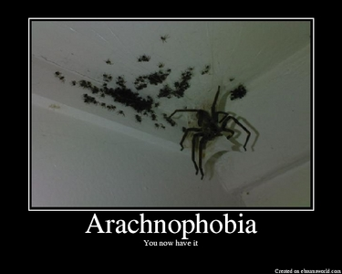 Arachnophobia cause my largest fear is SPIDERS!