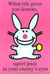 happy bunny : )