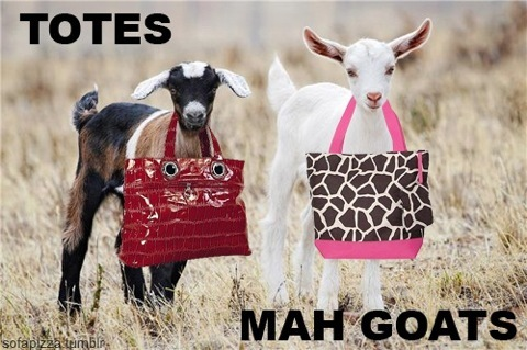 I admit it doesn't make much sense oh and here's goats with totes to add to the Болталка pics.