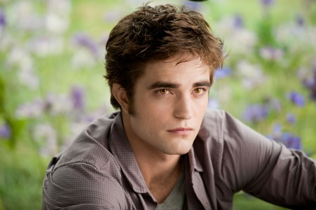 My favourite character would be Edward Cullen . I like him because he is very kind and compassionate . He puts Bella's safety and welfare before everything . He leaves Bella to keep her محفوظ , though he loves her for eternity . He tries to kill himself when he recieves the false information that Bella is dead . He chose to feed on the worst people of the society , because he thought he was doing social service . He does everything in his power to keep Bella محفوظ . He spends his free night hours to read کتابیں , studying languages and موسیقی -some of the things I like to do . He is romantic سے طرف کی دل and don't forget He's extremely handsome!! p.s - This was a really hard decision
