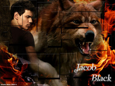 for sure team jacob