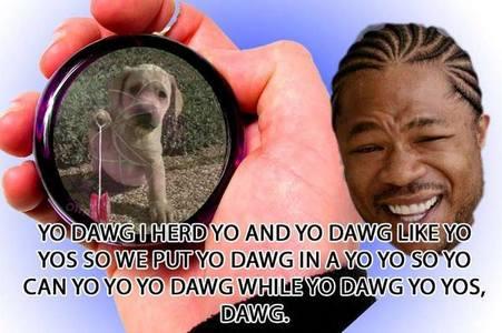 Yo Dawg I heard...