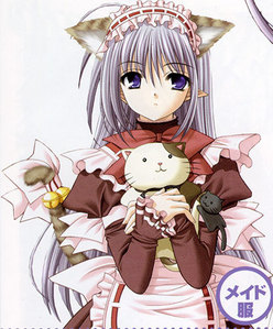 I always think of Primula everytime I saw nekomimi XD