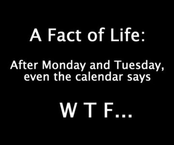 Don't know if it's funny but it's true! :D