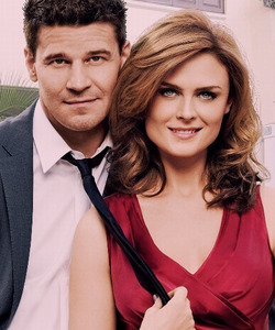 It has to be Booth. Angle is not better than Booth, and in Bones he has a sexier girlfriend. Bones of course.